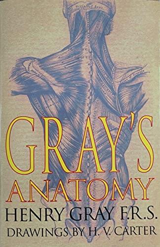 9780752574318: Gray's Anatomy