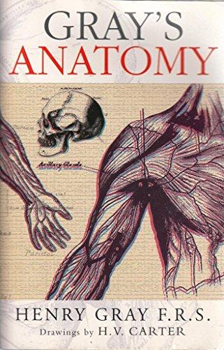 9780752597751: Anatomy