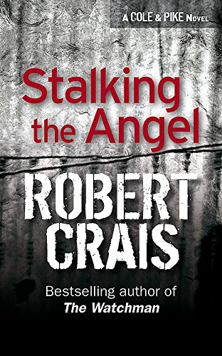 9780752817019: Stalking The Angel