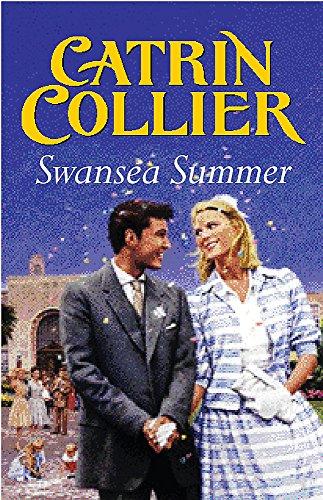 9780752832340: Swansea Summer