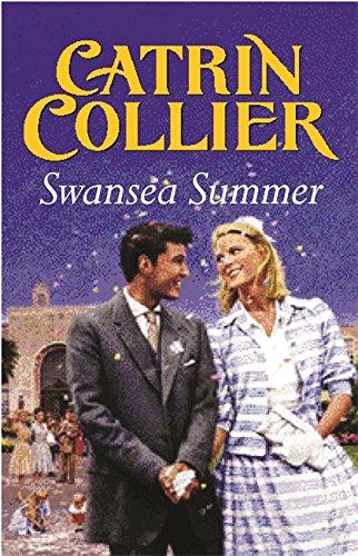 9780752851464: Swansea Summer