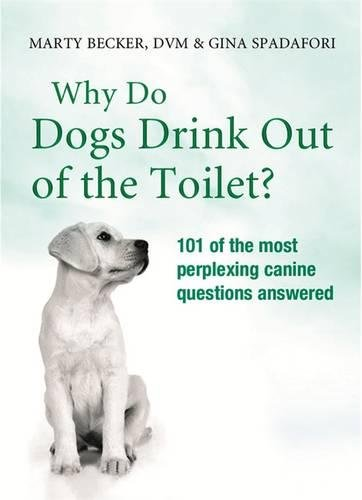 9780752882499: Why Do Dogs Drink Out Of The Toilet?