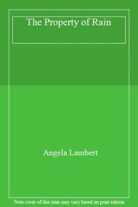 9780753165836: The Property of Rain