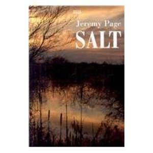 9780753179956: Salt (Isis General Fiction)