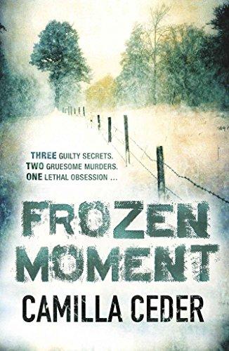 9780753189252: Frozen Moment