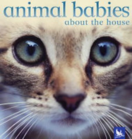 9780753410776: Animal Babies About the House