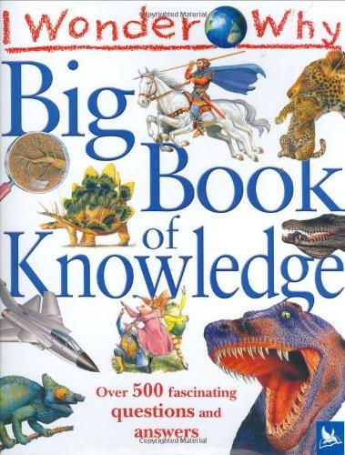 9780753411872: I Wonder Why Big Book of Knowledge (I Wonder Why S.)