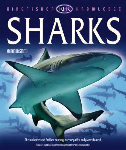 9780753416051: Sharks (Kingfisher Knowledge)