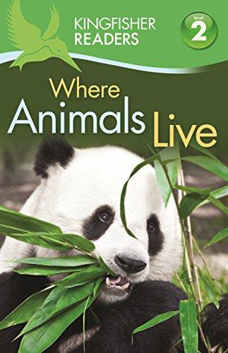 Where Animals Live: Stones, Brenda