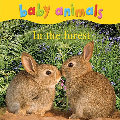 9780753431122: Baby Animals in the Forest.