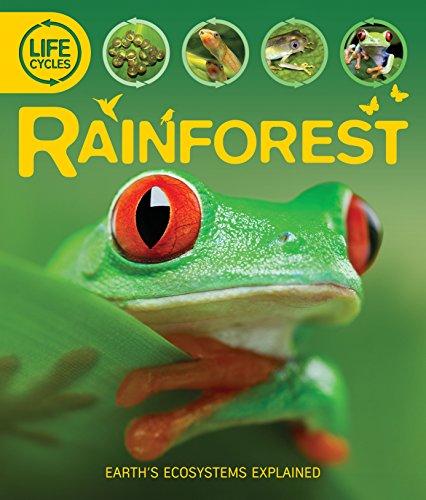 9780753431702: Rainforest
