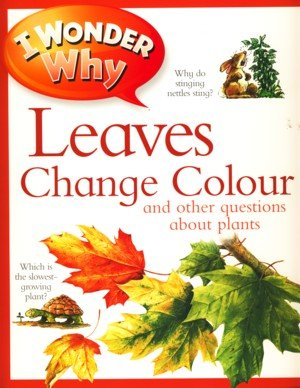 9780753435328: I Wonder Why Leaves Change Colour Lifetime Special