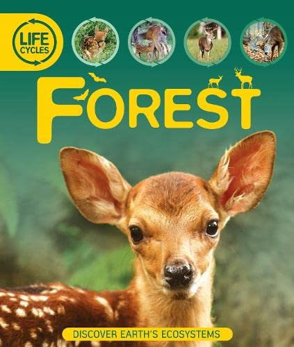 9780753436547: Life Cycles: Forest