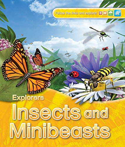 Explorers: Insects and Minibeasts: Jinny Johnson