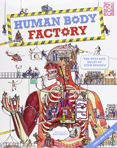 9780753437612: Human Body Factory