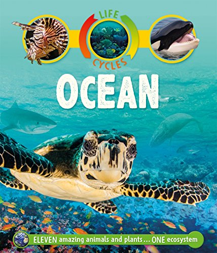 9780753442814: Life Cycles: Ocean