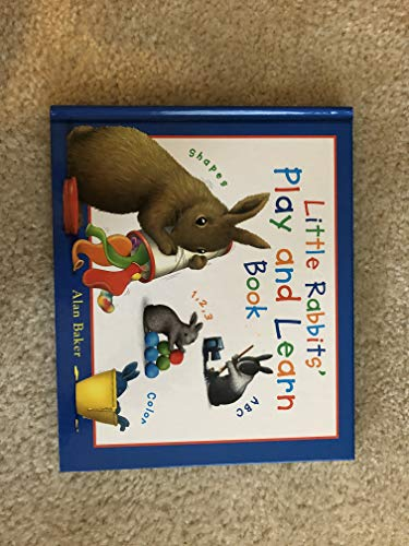 Little Rabbits' Play and Learn Book (Little Rabbit Books): Alan Baker