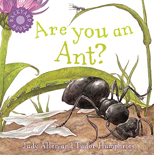 9780753458037: Are You an Ant? (Backyard Books)