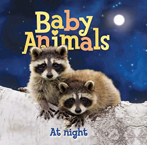 9780753464588: Baby Animals At Night