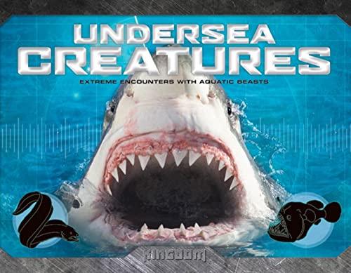 9780753466667: Kingdom: Undersea Creatures