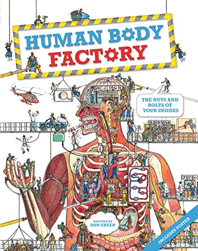 9780753468081: Human Body Factory [With Poster]