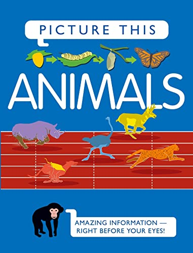9780753468876: Picture This! Animals