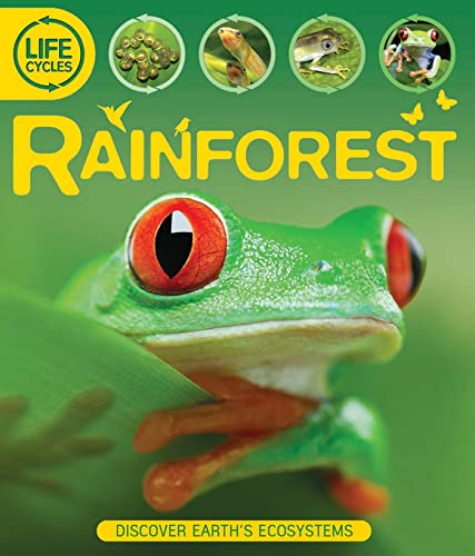 9780753468937: Life Cycles: Rainforest