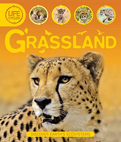 Life Cycles: Grassland (Lifecycles (Kingfisher)): Sean Callery