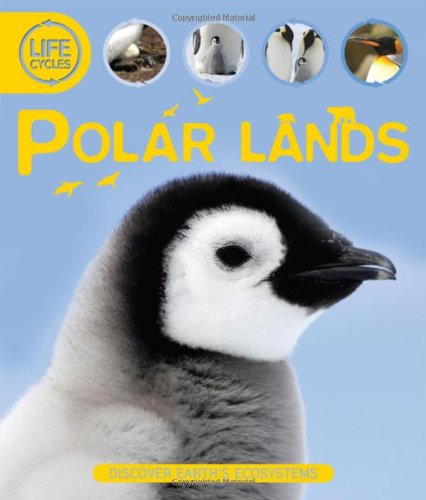 9780753468968: Polar Lands (Lifecycles (Kingfisher))