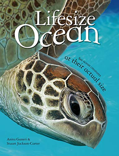 9780753470978: Lifesize: Ocean: See Ocean Creatures at their Actual Size