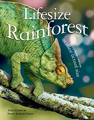 9780753471913: Lifesize: Rainforest: See Rainforest Creatures at Their Actual Size