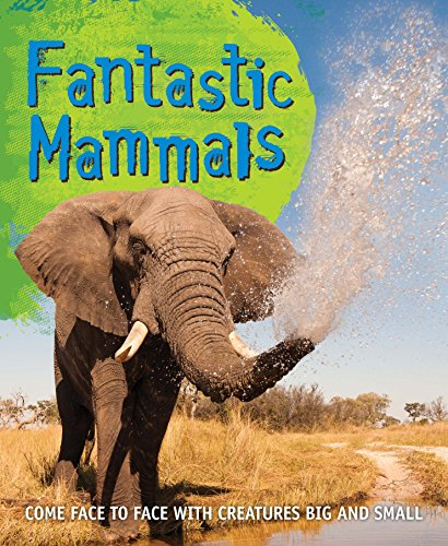 9780753472750: Fast Facts: Fantastic Mammals: Meet some amazing animals, big and small