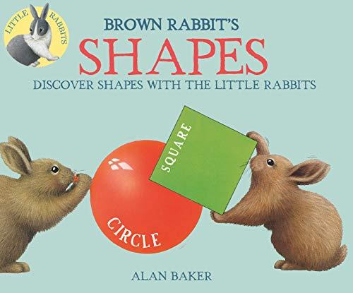 9780753473269: Brown Rabbit's Shapes (Little Rabbit Books)