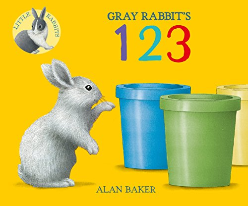 9780753473641: Gray Rabbit's 123 (Little Rabbit Books)