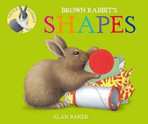 9780753473658: Brown Rabbit's Shapes (Little Rabbit Books)