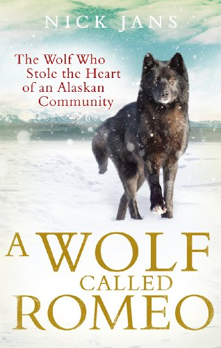 9780753540886: A Wolf Called Romeo