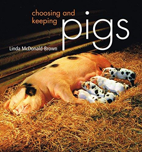 9780753721094: Choosing and Keeping Pigs