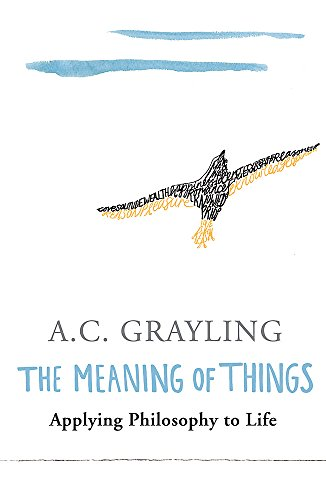 9780753813591: The Meaning of Things: Applying Philosophy to life