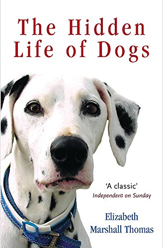9780753817292: The Hidden Life Of Dogs LATEST