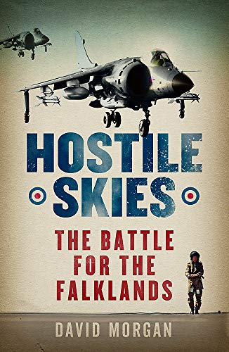 9780753821992: Hostile Skies