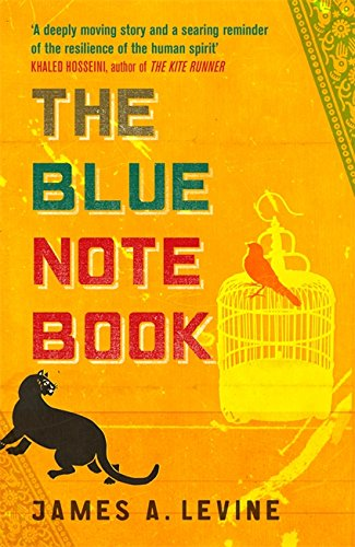 9780753826508: The Blue Notebook