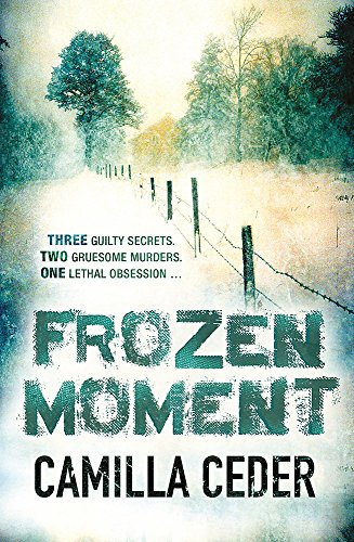 9780753827727: Frozen Moment
