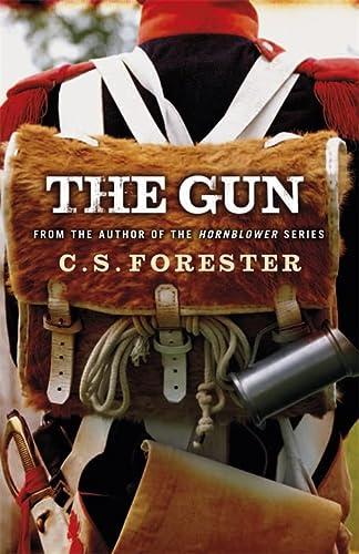 9780753829141: The Gun