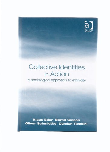 Collective Identities in Action: A Sociological Approach: Klaus Eder/ Bernd