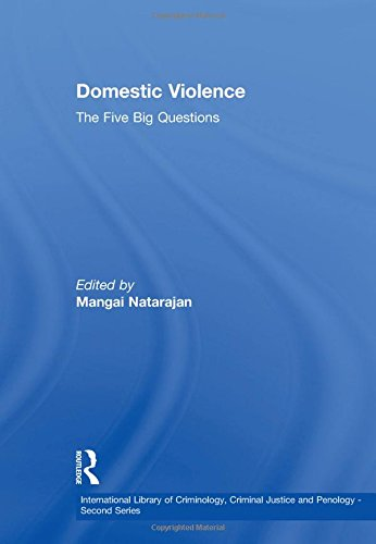 Domestic Violence: The Five Big Questions (Hardback)