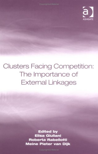 9780754644613: Clusters Facing Competition: The Importance of External Linkages