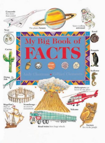 9780754802280: My Big Book of Facts