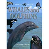 9780754807636: Whales and Dolphins