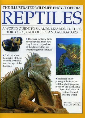 9780754815037: The Illustrated Wildlife Encyclopedia Reptiles: A World Guide to Snakes, Lizards, Turtles, Tortoises, Crocodiles and Alligators