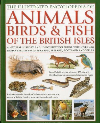The Illustrated Encyclopedia of Animals, Birds &: Tom Jackson
